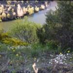 paisajessalvajes